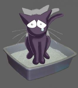 chat constipe